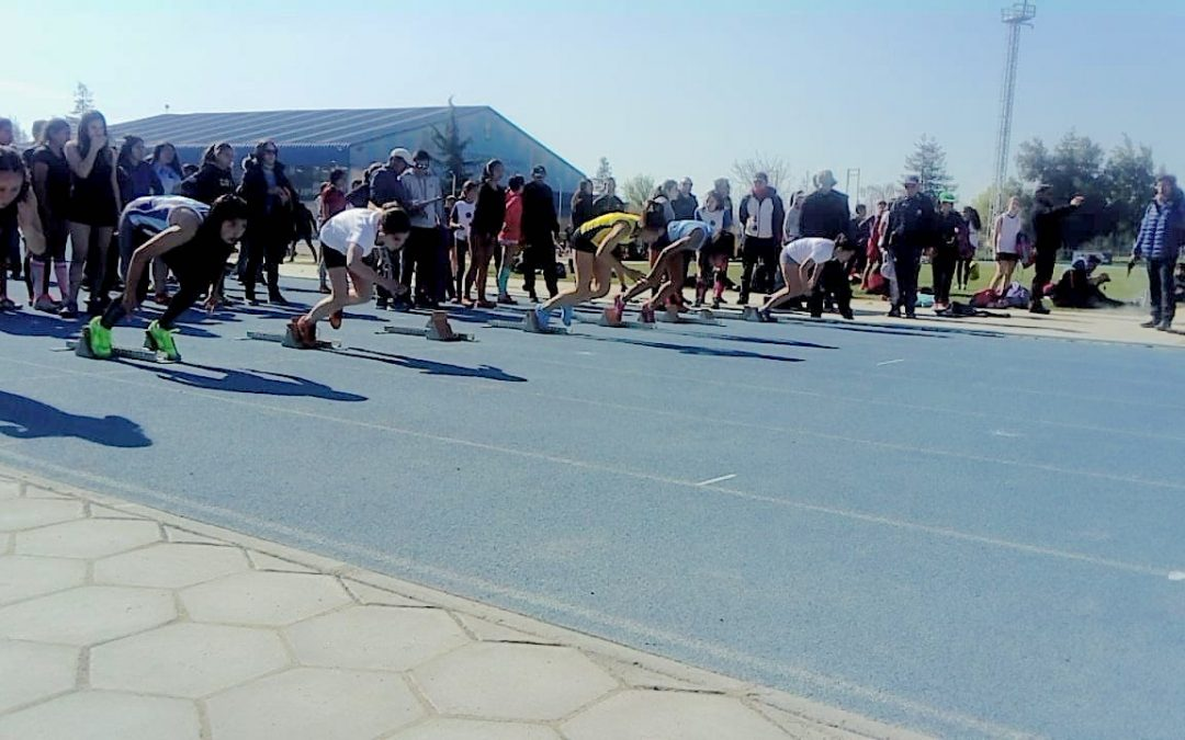 Copa Soprole Zona Sur