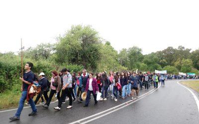 Peregrinación Juvenil a Hualañé